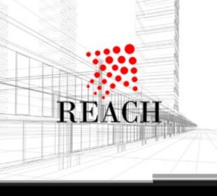 reach group